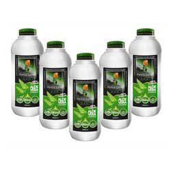 Aloe Vera Juice Take 5 LITERS Pay Only 4