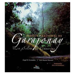 Garajonay, The Canary Islands Jungle